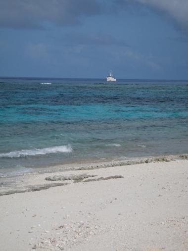 Ilot Bampton aux Chesterfield, navire Amborella, parc naturel de la mer de corail.jpg