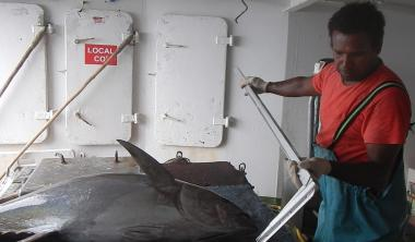 Programme observateur des pêches, navire Katia © DAM SPE.jpg