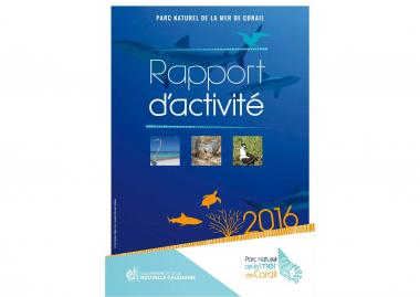 Couverture_rapport_2016.jpg