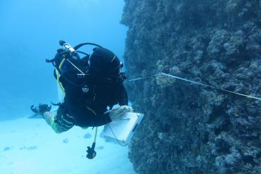 Surveying a reef in the Coral sea Marine Park ©Daniela Ceccarelli