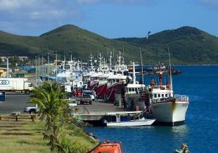Navires de pêche à quai, © DAM SPE.jpg