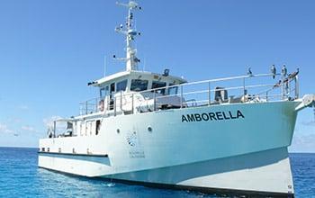 Mission de suivi avec l'Amborella,  David Ugolini SCO