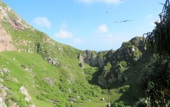 L'île Hunter vue de l'intérieur, Jean-François Butaud, Conservation International