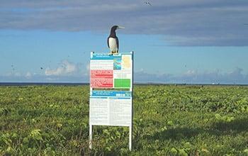 Ile Leleizour, atolls d'Entrecasteaux, DAM SPE