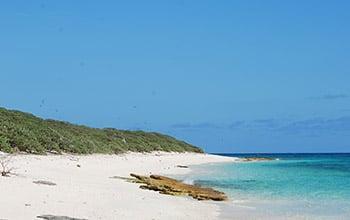 Île Longue, plateau des Chesterfield, Pierre Bachy, SCO