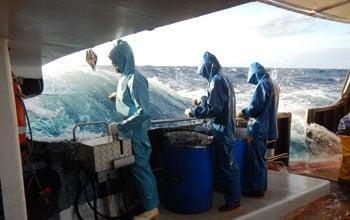 Pêche à bord du navire Pescana Résolu, DAM/SPE