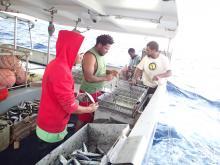 Pêche à la palangre navire La Renaissance (c) programme Observateurs embarqués.jpg