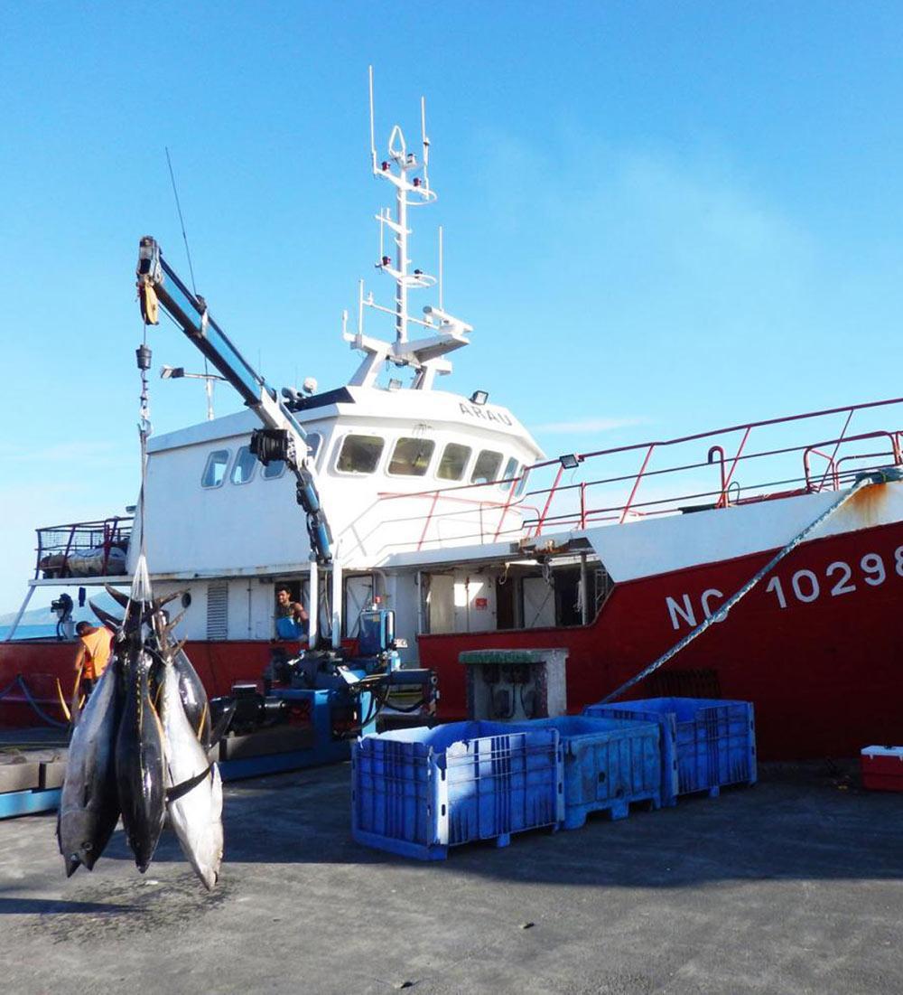 Arau boat