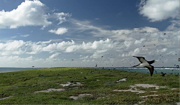 Entrecasteaux îlot Huon ©DAM-NC SPE