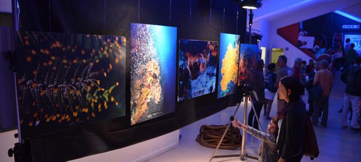 L'exposition « Immersion inédite au cœur des atolls d'Entrecasteaux » était visible toute la semaine au Rex (c) Gouvernement NC