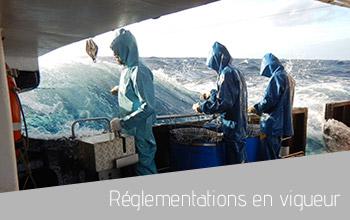 regelmentations_btn.jpg
